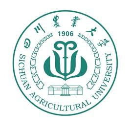 四川农业大学网络教育
